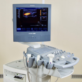 SIEMENS ACUSON X300 ULTRASOUND WITH 4 PROBES AND FLAT SCREEN